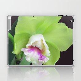 Green Cattleya Orchid Laptop & iPad Skin