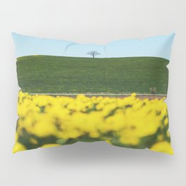 Among the Yellow Pillow Sham