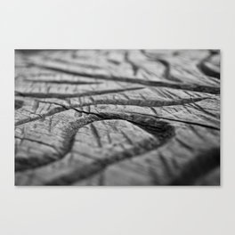 Wood carving Canvas Print