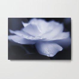 Sweet a beautiful Gardenia flower with water droplets Metal Print