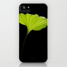 Leaf of the nervilia aragoana  iPhone Case