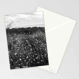 Meadow Stationery Cards