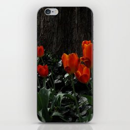 old and young in nature iPhone Skin