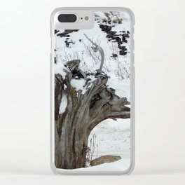 Stumpy and the Rock Wall in Winter White Clear iPhone Case