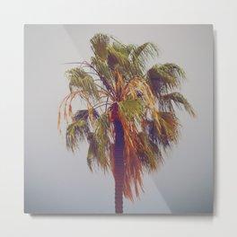 Lone Palm Metal Print