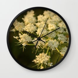 Queen Anne's Lace Flower Wall Clock