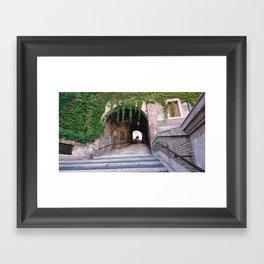 Escalinata Framed Art Print