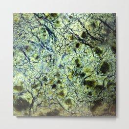 mineral Metal Print