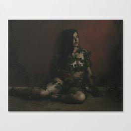 SWEET BLOOM Canvas Print