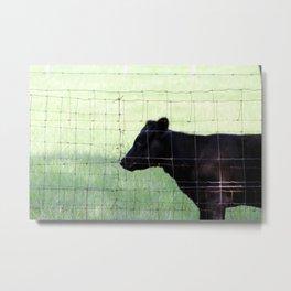 Fencing Cow Metal Print