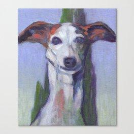 Hound Canvas Print