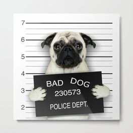 BAD--DOG Metal Print