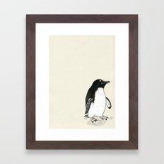 Adelie Penguin Framed Art Print