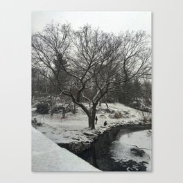 Snow in Central Park Canvas Print