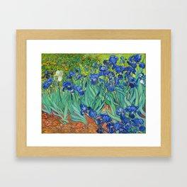 Vincent Van Gogh Irises Painting Detail Framed Art Print
