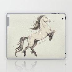 Equuleus Laptop & iPad Skin