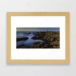 Brier Island Shoreline Framed Art Print