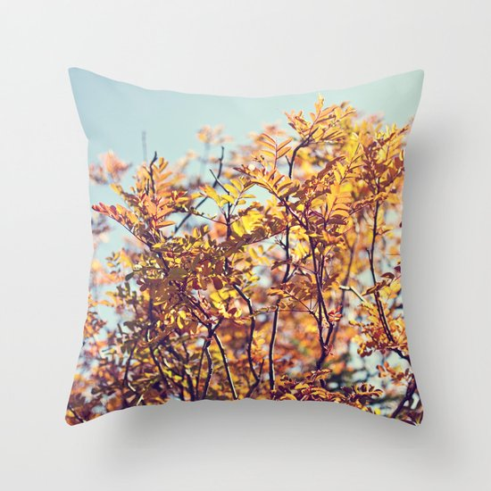 Mountain Fall Throw Pillow
