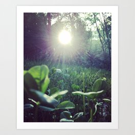 Lucky Sunrise Art Print