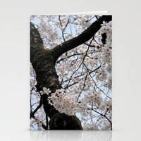 cyarin Stationery Cards featuring Sakura Blooming (Japan) by Julie Maxwell