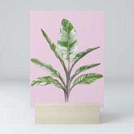 Green Leaves House Plant on Pink Mini Art Print