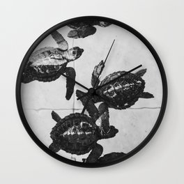 Baby sea turtles in on a island in Bali, Indonesia | Black and white animal photography | Art print Wall Clock