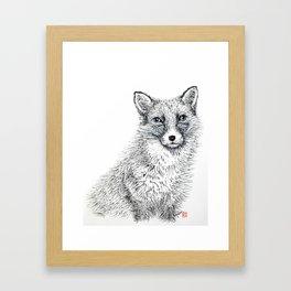 Fox staring Framed Art Print