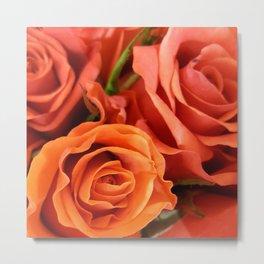 Peach Rose 3 Metal Print