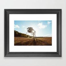 Standing in the Sun Framed Art Print