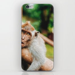 Cute Monkey (Color) iPhone Skin