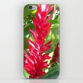 Red Ginger iPhone Skin