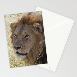 Peaceful lion face Stationery Cards