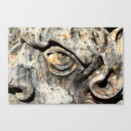 Stone Monster's eye Canvas Print