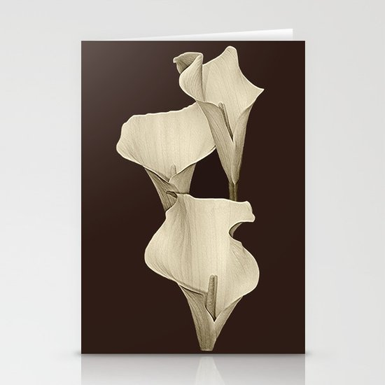 Cream Calla Lilly. Stationery Cards
