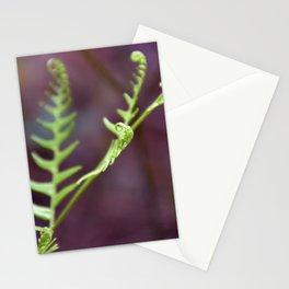 Fresh Unfurling Fern Stationery Cards