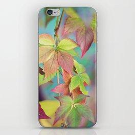 Colorful fall iPhone Skin