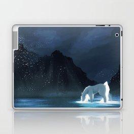 Hidden Place Laptop & iPad Skin