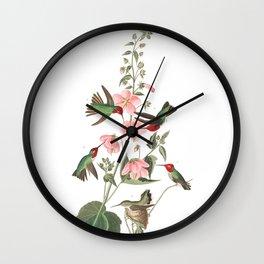 Columbian humming, Birds of America, Audubon Plate 425 Wall Clock