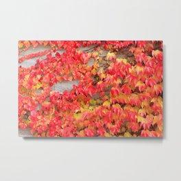 Red Leaves Metal Print