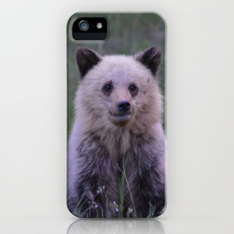 The most adorable grizzly bear cub in Jasper National Park | Canada iPhone Case