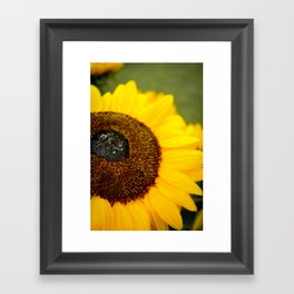 The Sunflower Framed Art Print