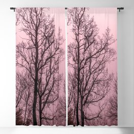 Naked trees silhouette Blackout Curtain