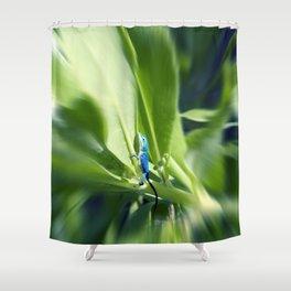Sapphire Blue Little Lizard in Costa Rica Rainforest Shower Curtain