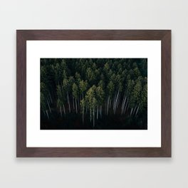 Aerial Photograph of a pine forest in Germany - Landscape Photography Framed Art Print
