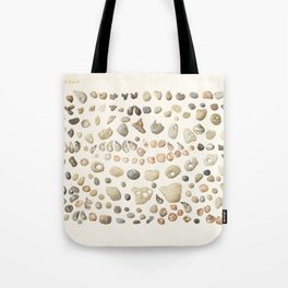 Sea shore Netania Tote Bag