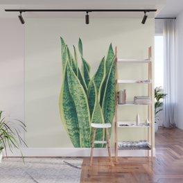 Snake Plant Wall Mural