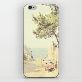 Vintage Summer iPhone Skin