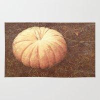 pumpkin Area & Throw Rugs featuring Pumpkin by Yellowstone Photo Studio