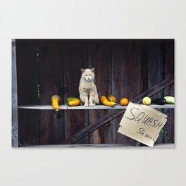 Autumn Cat with Squash Canvas Print