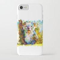 koala iPhone & iPod Cases featuring Koala  by ururuty
